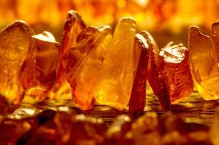 Złoto Północy i medycyna naturalna. Czy nalewka z bursztynu faktycznie leczy?
