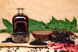 Czarny bez – naturalny środek na zwiększenie odporności. Sprawdź jego właściwości!