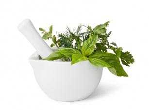 Natura w walce z przeziębieniem! Sprawdź po jakie zioła sięgnąć na katar, kaszel i gorączkę!