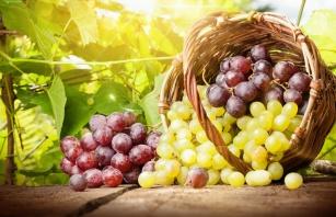 Ekstrakt z pestek winogron zobacz na co jest skuteczny?