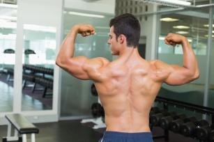 Mięśnie – wszystko, co musisz o nich wiedzieć. Jak zwiększyć siłę mięśni?