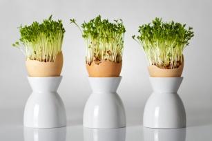 Wiosenny sposób na oczyszczenie organizmu. Poznaj właściwości rzeżuchy