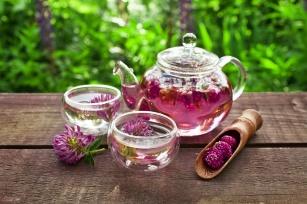 Koniczyna czerwona – sposób na dolegliwości przy menopauzie?