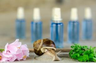 Zaskakująco skuteczny składnik kosmetyczny. Co potrafi śluz ze ślimaka?