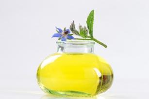 Sposób na wzmocnienie i piękną skórę. 6 właściwości oleju z ogórecznika