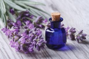 Lawenda - dar w medycynie i kosmetologii