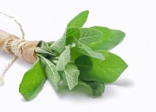 Szałwia hiszpańska, nasiona chia – poznaj 9 możliwości zastosowania tej fenomenalnej rośliny.