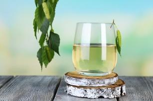 Oskoła, czyli sok z brzozy – odkryj, jak wiele jest powodów, by po niego sięgnąć.