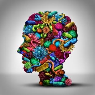 Sojusznicy twojej odporności. Dobre bakterie i ich wpływ na zdrowie