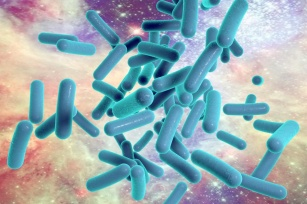 Pałeczka ropy błękitnej - niebezpieczna bakteria oporna na antybiotyki!