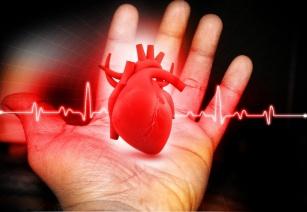 Żyj z głową dla serca !