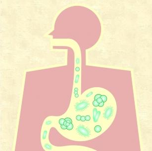 Mikroflora jelitowa - czy odporność bierze się z brzucha?