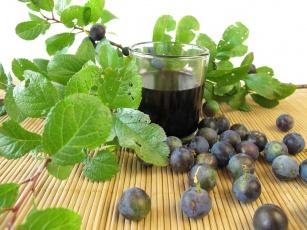 Tarnina - właściwości zdrowotne i lecznicze owoców, kwiatu i soku z tarniny