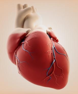 Objawy, leczenie i zapobieganie choroby niedokrwienia serca