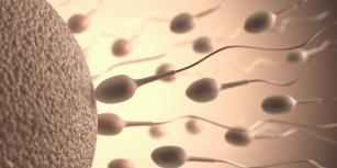 Co pomaga na wzmocnienie męskiej płodności?