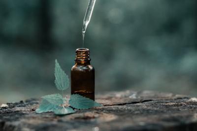 Po co nam olejki eteryczne?