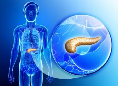 Badanie enzymów trzustkowych - kiedy się je wykonuje? Jak czytać wyniki?