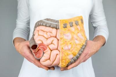 Dysbioza jelitowa - czym jest i w jaki sposób wpływa na funkcjonowanie organizmu?