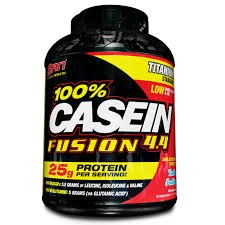 SAN - 100 % Casein Fusion - 1000 g