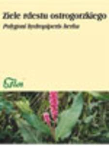 Ziele rdestu ostrogorzkiego