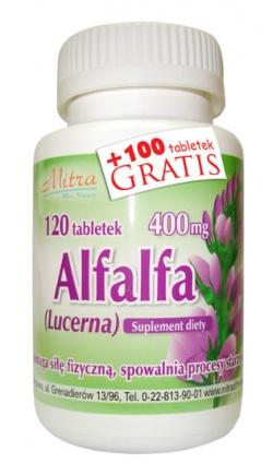 Alfalfa, 120 tabletek + 100