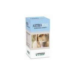 ArtroTine Zdrowe stawy, 60 tabletek