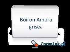Boiron Ambra grisea