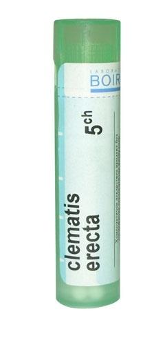 Boiron Clematis erecta, 5CH, granulki, 4 g