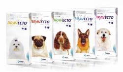 Bravecto, 1 tabletka