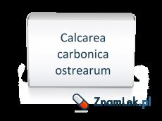 Calcarea carbonica ostrearum