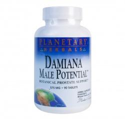 DAMIANA - 90 kapsułek