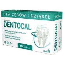 Dentocal 60 tabl