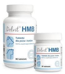 Dolvit HMB, 90 tabletek