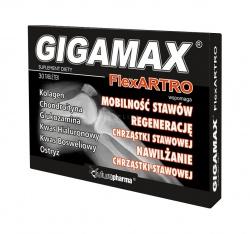 GIGAMAX FLEXARTRO