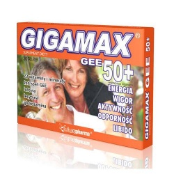 GIGAMAX GEE