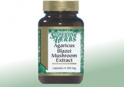 Grzybek Agaricus Blazei - ekstrakt, 90 kapsułek 500 mg