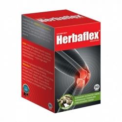 HERBAFLEX 90 tabl