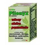 Pilonyx