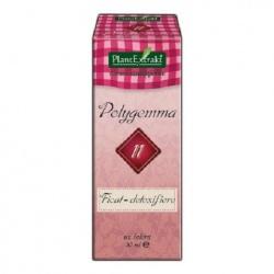 Polygemma 11, 50 ml
