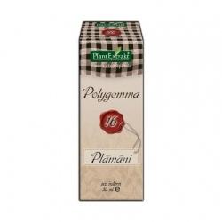 Polygemma 16, 50 ml