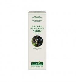 Ribes nigrum, 15 ml