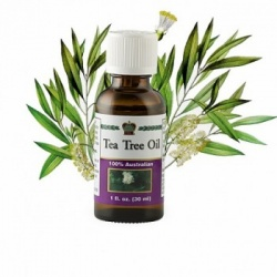Tea Tree Oil, 30ml