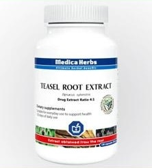 Teasel Root Extract, 120 kapsułek