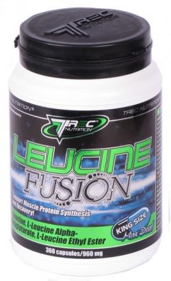 TREC - Leucine Fusion 800mg 90 kaps