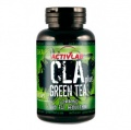 CLA Green Tea Plus
