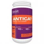 Anticat