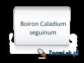 Boiron Caladium seguinum