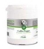 Calfos Puppy