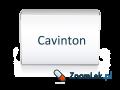 Cavinton