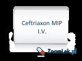Ceftriaxon MIP I.V.